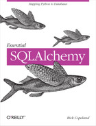 Cover image for Essential SQLAlchemy