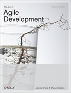 Cover image for The Art of Agile Development