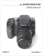 Cover image for Sony Alpha DSLR A100: A Better Manual