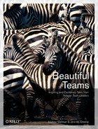 Cover of Beautiful Teams