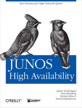 Under the Hood of the Routing Engine - JUNOS High Availability [Book]