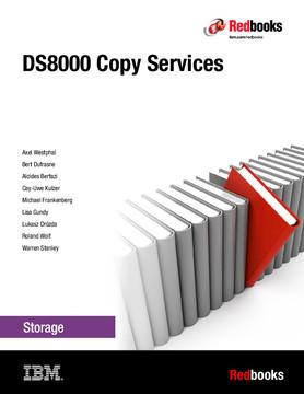 DS8000 Copy Services