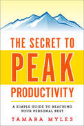 Cover of The Secret to Peak Productivity