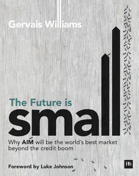 The Future is Small: Why AIM will be the world's best market beyond the credit boom
