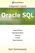 Cover of Oracle SQL: A Beginner's Tutorial