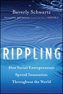 Cover of Rippling: How Social Entrepreneurs Spread Innovation Throughout the World
