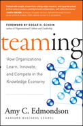 Cover of Teaming: How Organizations Learn, Innovate, and Compete in the Knowledge Economy