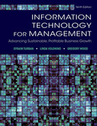 Cover of Information Technology for Management: Advancing Sustainable, Profitable Business Growth, 9th edition