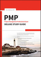 Cover of PMP Project Management Professional Exam Deluxe Study Guide