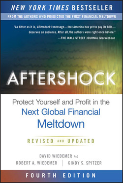 Aftershock: Protect Yourself and Profit in the Next Global Financial Meltdown, 4th Edition
