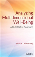 Cover of Analyzing Multidimensional Well-Being