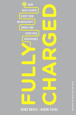 Fully Charged: How Great Leaders Boost Their Organization's Energy and Ignite High Performance
