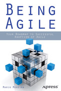 Cover of Being Agile: Your Roadmap to Successful Adoption of Agile