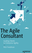 Cover of The Agile Consultant: Guiding Clients to Enterprise Agility