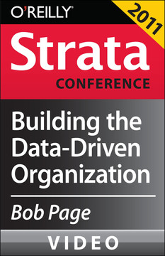 Building the Data-driven Organization