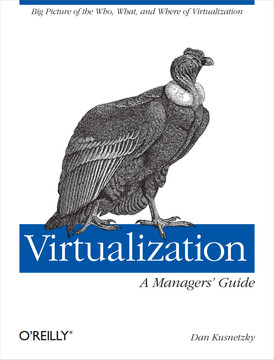 Virtualization: A Manager's Guide