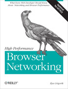 Cover image for High Performance Browser Networking