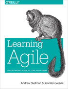 Cover of Learning Agile