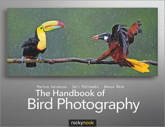 Cover image for The Handbook of Bird Photography