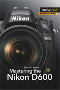 Cover image for Mastering the Nikon D600