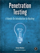 Cover of Penetration Testing