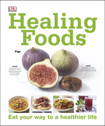 Cover of Healing Foods