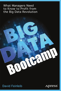Big Data Bootcamp: What Managers Need to Know to Profit from the Big Data Revolution
