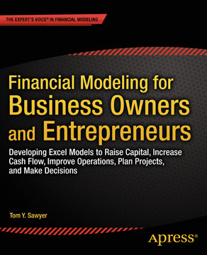 Financial Modeling for Business Owners and Entrepreneurs: Developing Excel Models to Raise Capital, Increase Cash Flow, Improve Operations, Plan Projects, and Make Decisions