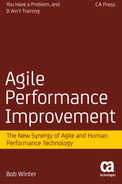 Cover of Agile Performance Improvement: The New Synergy of Agile and Human Performance Technology