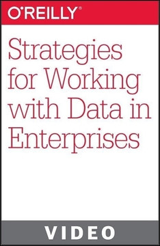 Strategies for Working with Data in Enterprises