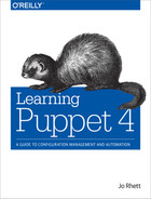Cover of Learning Puppet 4