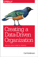 Cover of Creating a Data-Driven Organization