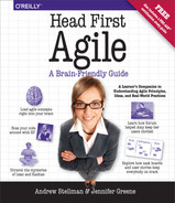 Cover of Head First Agile