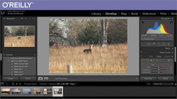Integrating Lightroom with Photoshop
