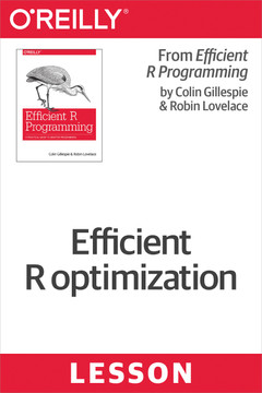 Efficient R optimization