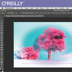 Learn to Use Photoshop CC 2017