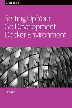 Setting up your Go development docker environment