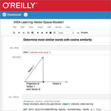 Learning Vector Space Models with SpaCy
