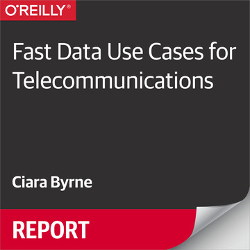 Fast Data Use Cases for Telecommunications