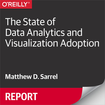 The State of Data Analytics and Visualization Adoption