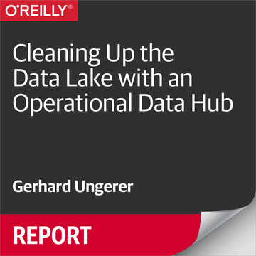 Cleaning Up the Data Lake with an Operational Data Hub