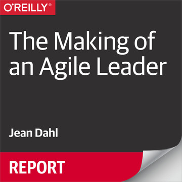 The Making of an Agile Leader