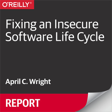 Fixing an Insecure Software Life Cycle
