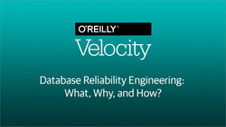 Database Reliability Engineering: What, Why, and How?