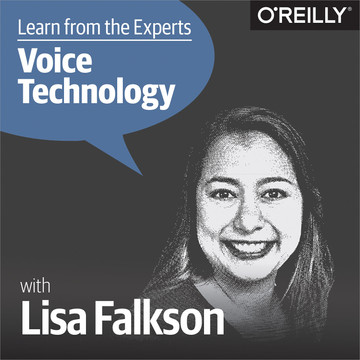 Learn from the Experts about Voice Technology: Lisa Falkson