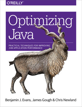Optimizing Java