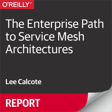 The Enterprise Path to Service Mesh Architectures