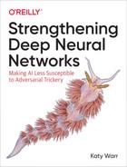 Strengthening Deep Neural Networks