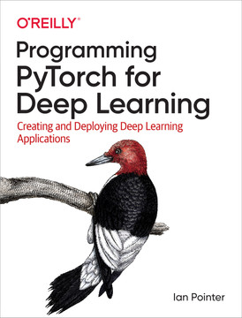 4  Transfer Learning And Other Tricks - Programming PyTorch