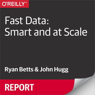 Fast Data: Smart and at Scale